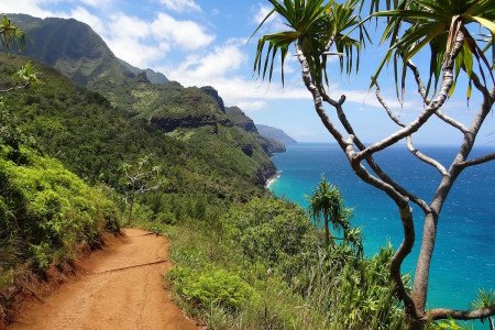 Top 5 Best Hikes in Kauai Hawaii