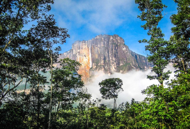 Angel Falls South America Venezuela Waterfall Scenic Mountain Jungle