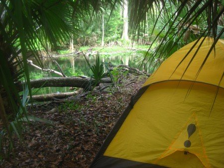 Camping the Ocala National Forest Trail Hiking Florida