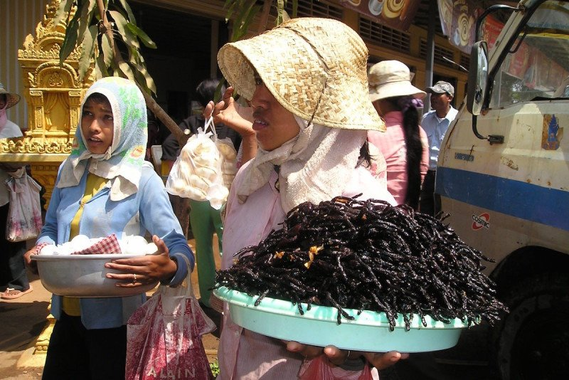 Cambodia Fried Spiders Cuisine Edible Insects