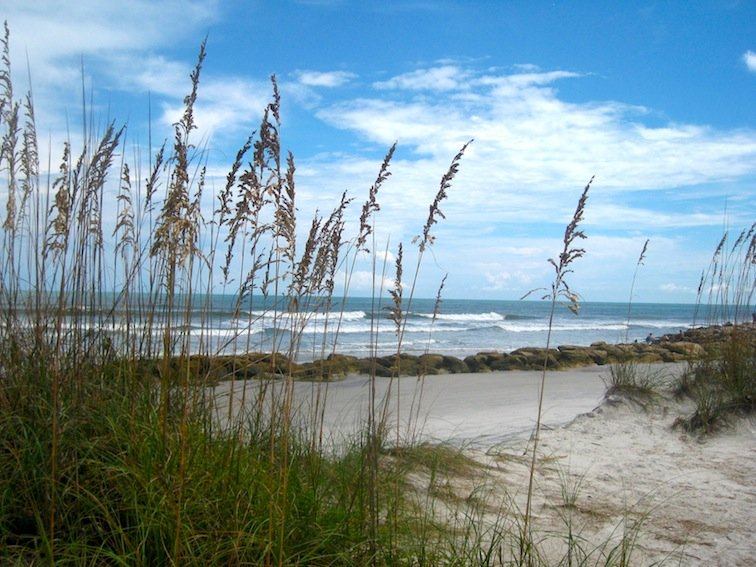 Anastasia State Park in St. Augustine, Florida | Image