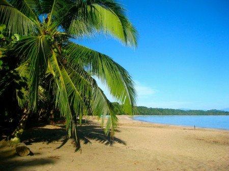 Costa Rica Morning Beach Stroll