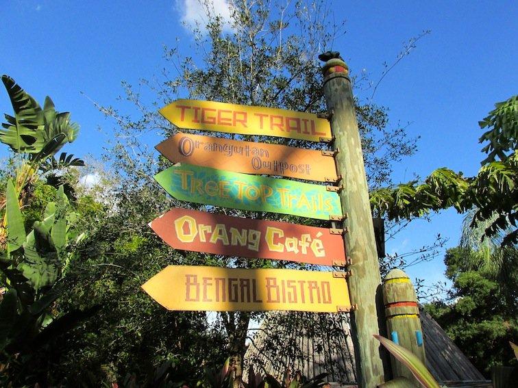 Taking Busch Gardens