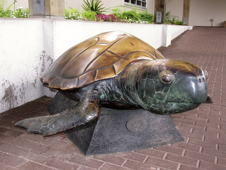 Metal Sea Turtle