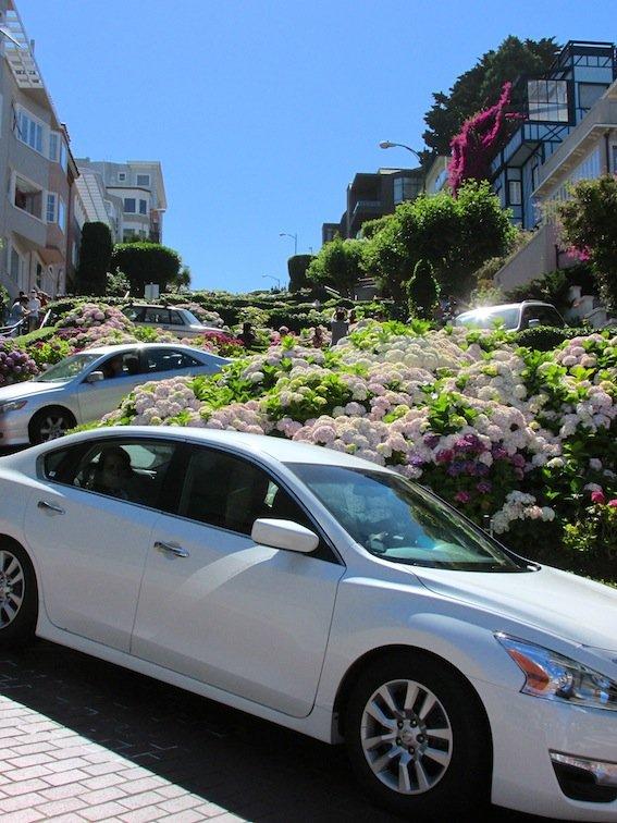 Lombard Street Traffic Jam