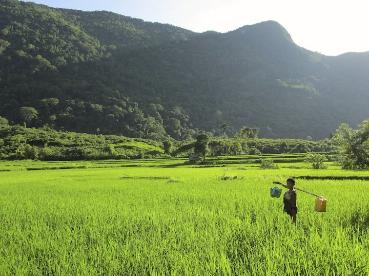 Trekking to Chantanohm Banna Village Northern Laos Rice Field