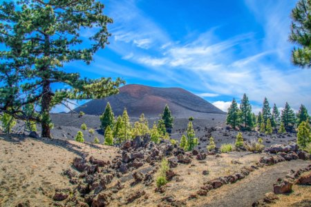 Off the Beaten Track in Tenerife of the Canary Islands: Land Shaped by Fire