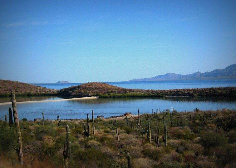 Baja Mexico California Desert