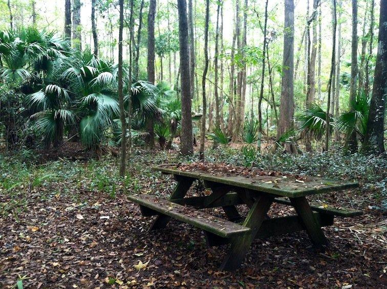 Florida Trail Hike Picnic Table