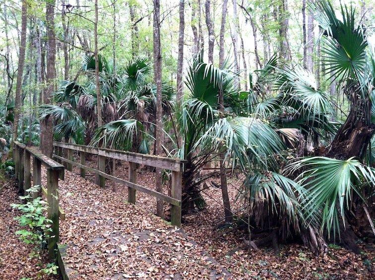 Florida Trail Hike Bridge