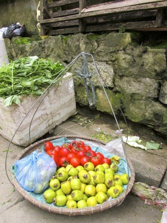 Sapa Vietnam Market Tomatoes