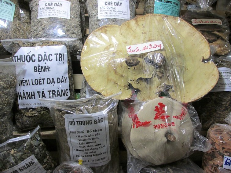 Sapa Vietnam Market Mushroom Tea Herb