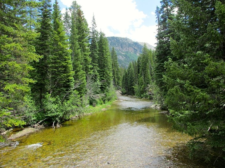 Independence Pass Continental Divide Aspen Colorado USA River Creek