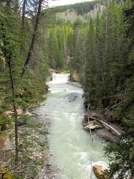 Hiking Banff Johnston Canyon Trail Canada Alberta Creek River
