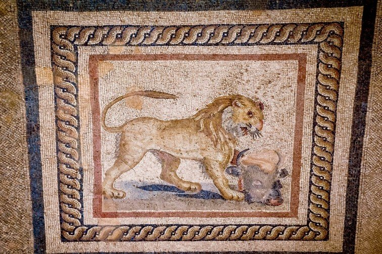 Mosaic Restoration Turkey Ephesus library of Celsus Travel Addicts