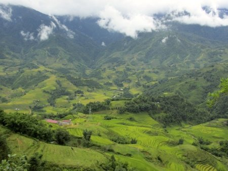 Sapa Vietnam Rice Fields Southeast Asia