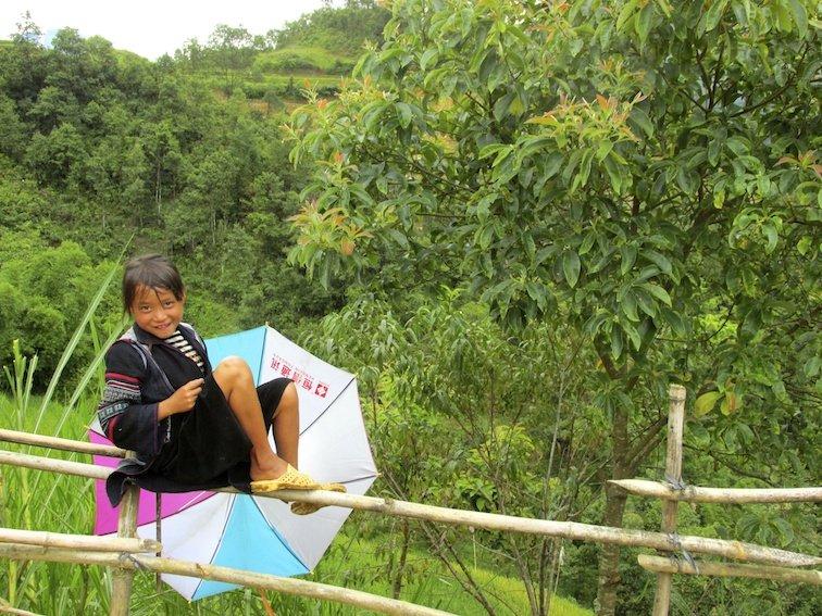 Sapa Vietnam Rice Fields Southeast Asia Child Umbrella