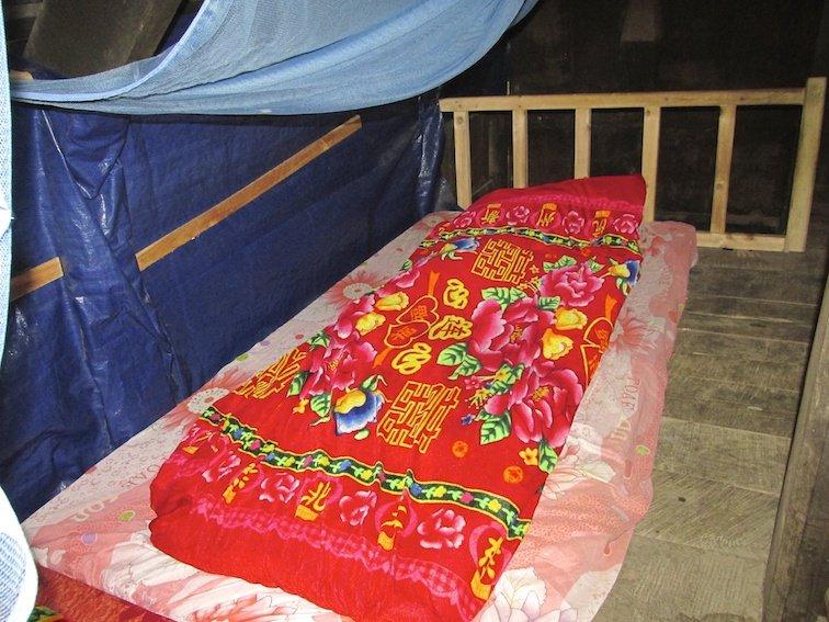 Sapa Vietnam Rice Fields Southeast Asia Rice Fields Modest Bed
