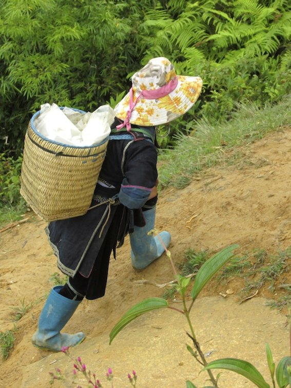 Sapa Vietnam Rice Fields Southeast Asia Guide Walk Hike Village Local labor