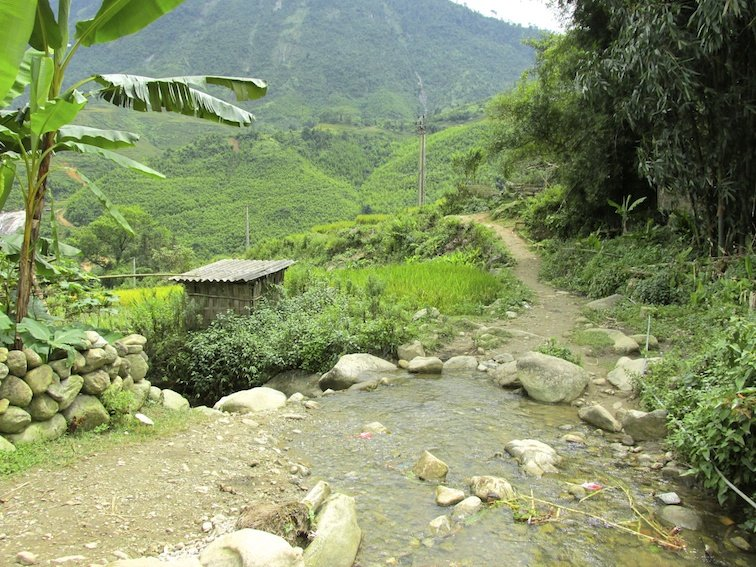 Sapa Vietnam Rice Fields Southeast Asia Guide Walk Hike Village Local Trail Hike Walk
