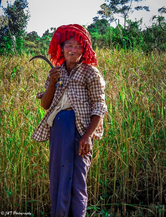 Myanmar farm woman inle lake kalaw hiike