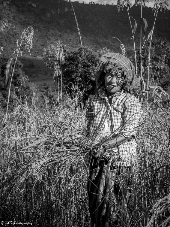 Myanmar farm woman portrait