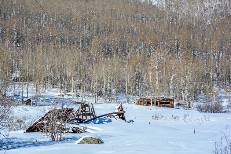 Colorado Aspen Showshoeing Snow Trees Backcountry Hiking Shack Building