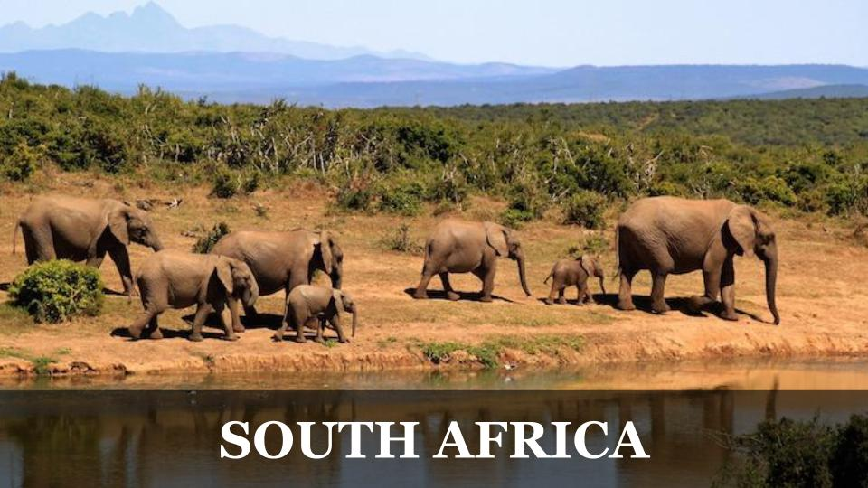Travel Around the World RTW to South Africa