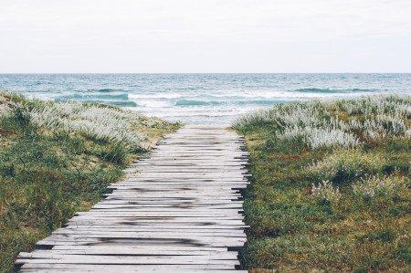 Beach Surf Travel Ocean Waves Boardwalk Sea