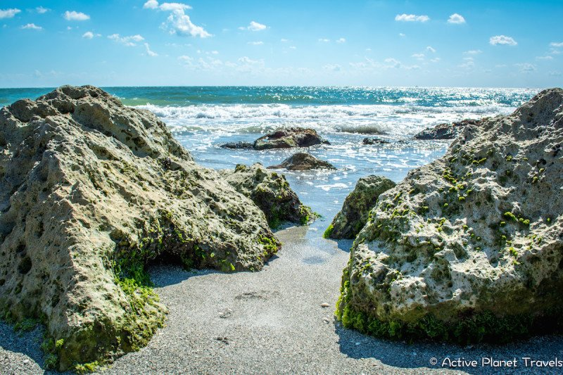 Clearwater Beach Florida Ocean Sea Rock