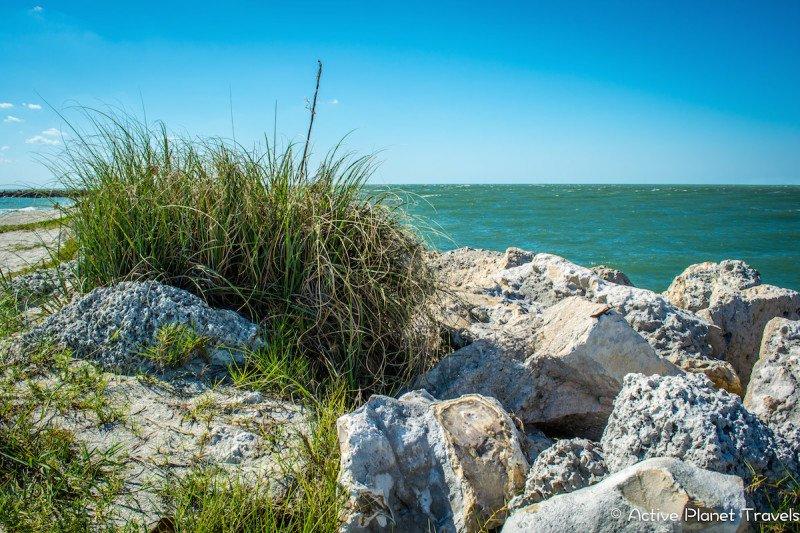 Clearwater Beach Florida Ocean Sea Rock Grass
