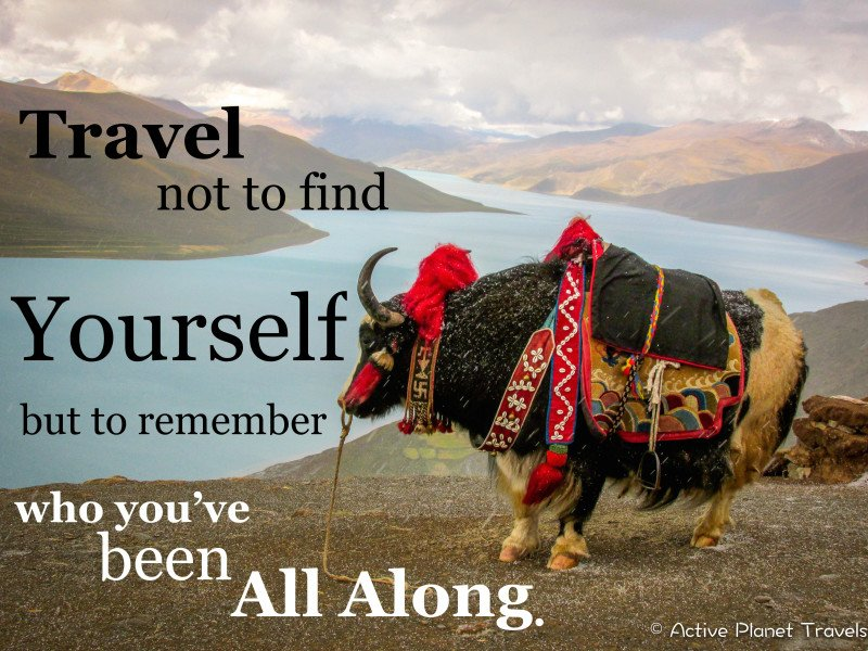 Travel not to find yourself, but to remember who you've been all along.