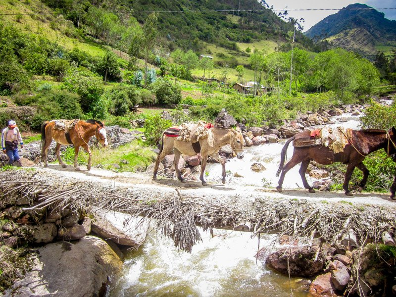 Machu Picchu, Peru, Mountain, Hiking, Off the beaten path, Mules, Creek, River, Cross,