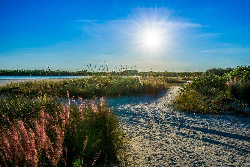 Tigertail Beach, Naples, Marco Island, Palm Tree, Florida, Beach