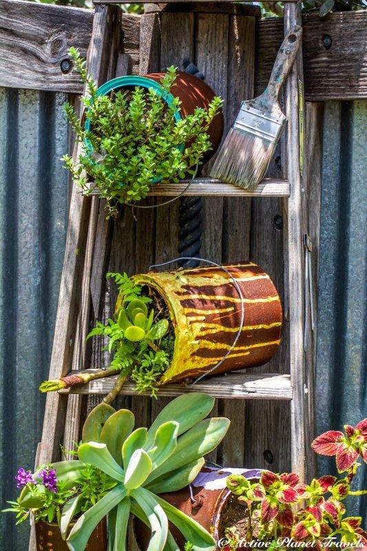 Naples Paradise Coast Florida Botanical Garden Flowers Ladder Paint Can Garden Art