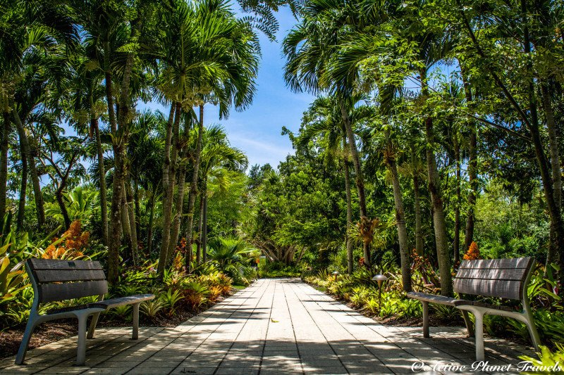 Top 45 Astonishing Photos Of The Naples Botanical Garden