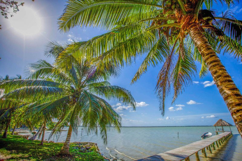 San Pedro Island, Belize, Central America, Sand, Beach, Tropical, fun, sailboat, water, sea, ocean, beach, Palm Tree, Deck, Dock