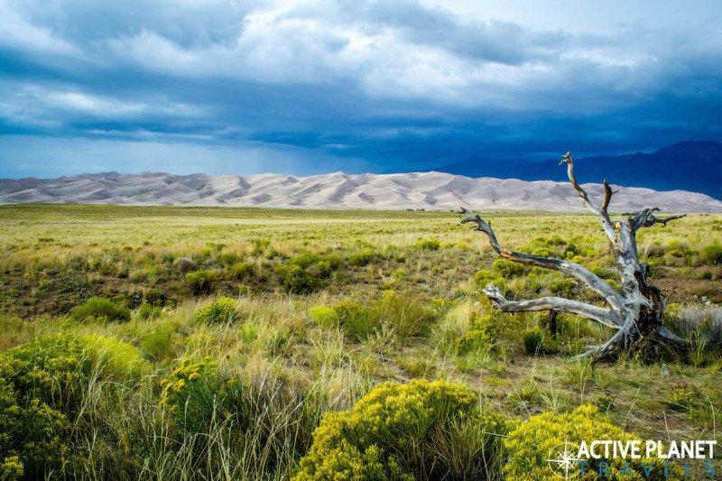 Outdoor adventure, travel, sand dunes, sand boarding, sandboarding, Great Sand Dunes, National Park, Colorado