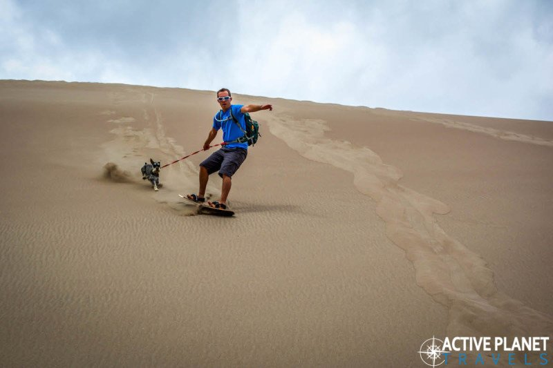 Outdoor adventure, travel, sand dunes, sand boarding, sandboarding, Great Sand Dunes, National Park, Colorado, Hiking, Kai, Desert, Dog, Miniature Schnauzer