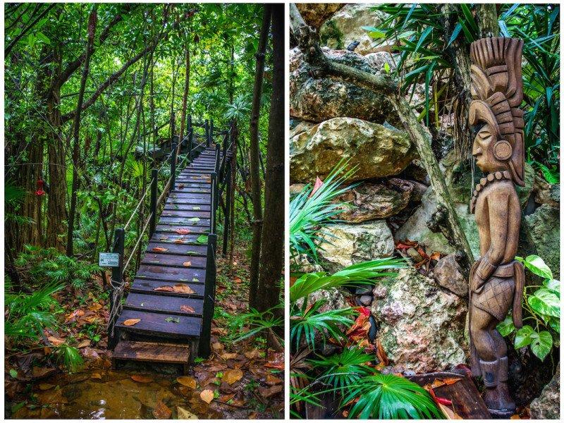 Eco-friendly resort san pedro belize island suite Bird Sanctuary