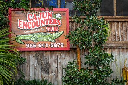 Cajun Encounters New Orleans Swamp Tour Louisiana