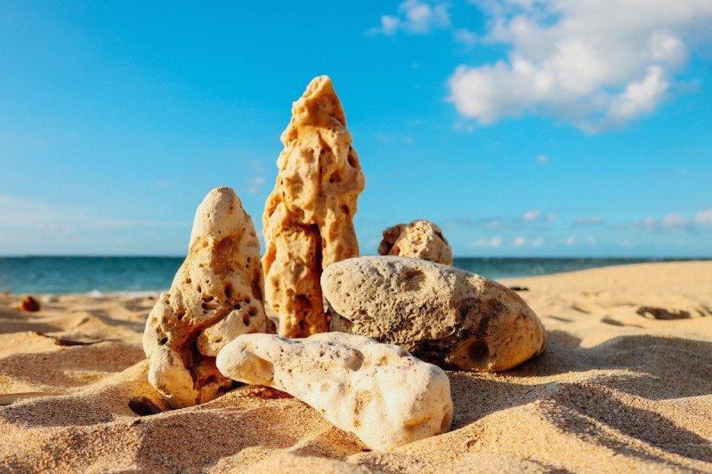 Hawaii Beach Rocks Coral Sand Ocean Sea